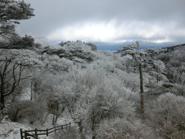 雪景色のちはや園地キャンプ場