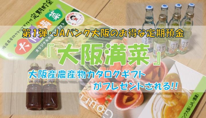 『大阪満菜』について詳しく紹介