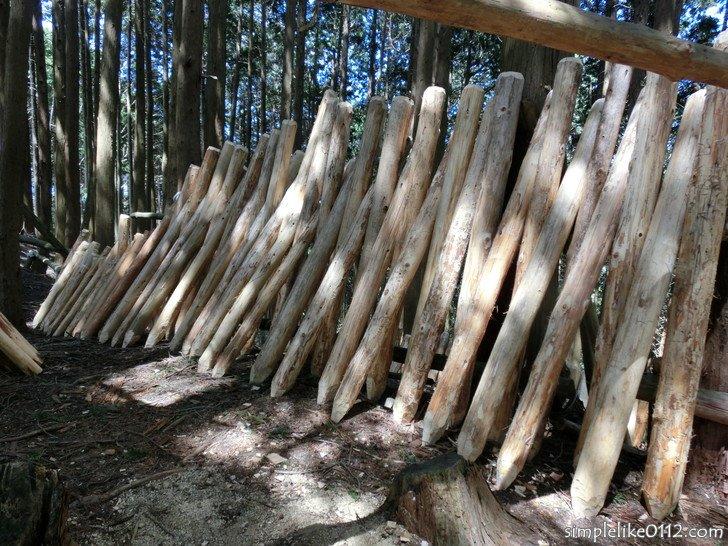 金剛山千早本道ルート・5合目の木の杭