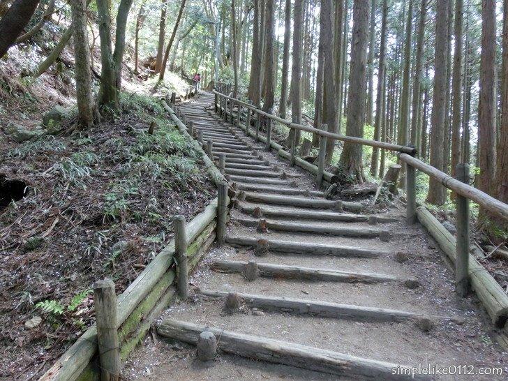 金剛山千早本道ルート・階段のようす