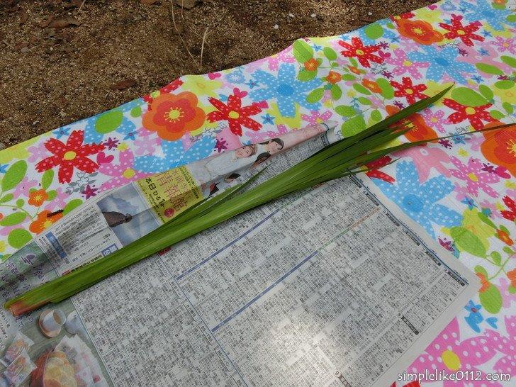 金剛山子供祭りでもらった菖蒲