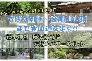 金剛山登山念仏坂ルート(ちはや園地~金剛山山頂)