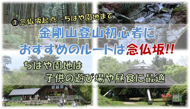 金剛山登山念仏坂ルート(念仏坂起点~ちはや園地)