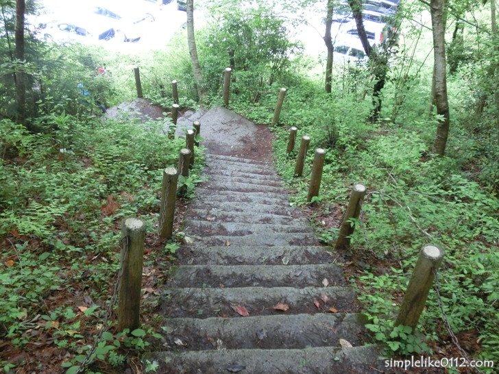 大阪府立金剛登山道駐車場の下る階段