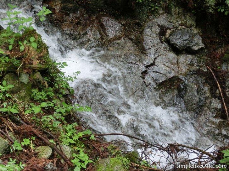 念仏坂登山道近くを流れる沢