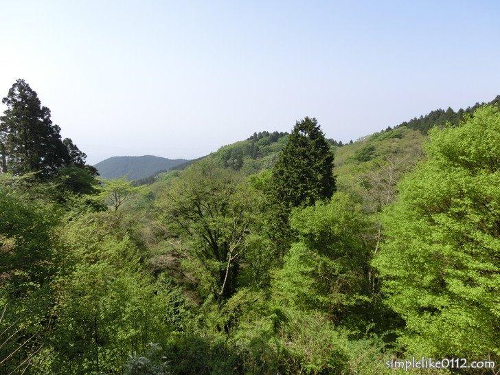金剛山山頂広場からの眺め
