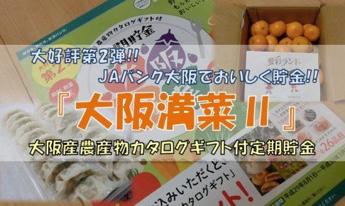 『大阪満菜Ⅱ』について詳しく紹介