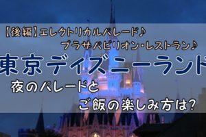 東京ディズニーランド【後編】夜のパレードとご飯の楽しみ方は?
