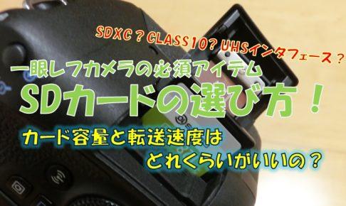 SDカードの選び方アイキャッチ画像