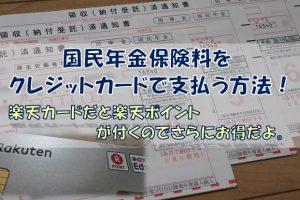 国民年金保険料クレジットカード納付