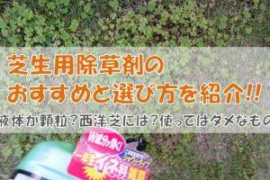 芝生用除草剤のおすすめと選び方