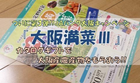 『大阪満菜Ⅲ』について詳しく紹介