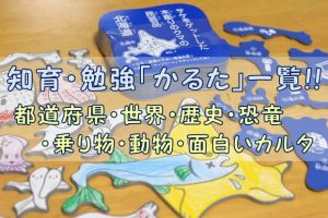 都道府県・世界・歴史・恐竜・乗り物・動物・面白いカルタ一覧