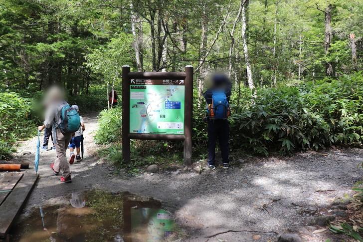 梓川コースと林間コースの分かれ道