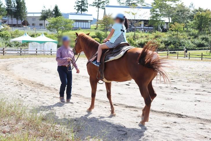 ひるがの高原「牧歌の里」引き馬体験