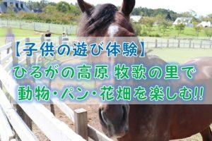 【子供の遊び体験】ひるがの高原 牧歌の里で動物・パン・花畑を楽しむ!!