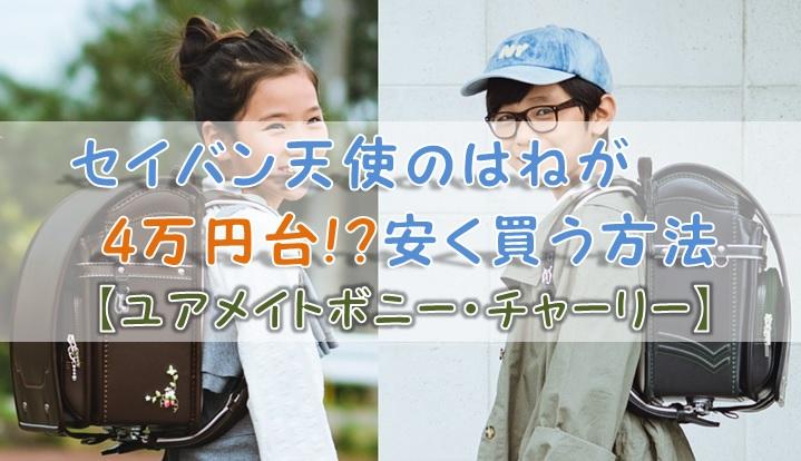 セイバン天使のはねが4万円台!?安く買う方法【ユアメイトボニー・チャーリー】