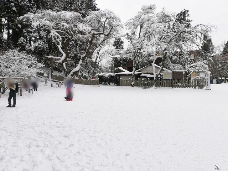 冬の金剛山って積雪するの知ってる?