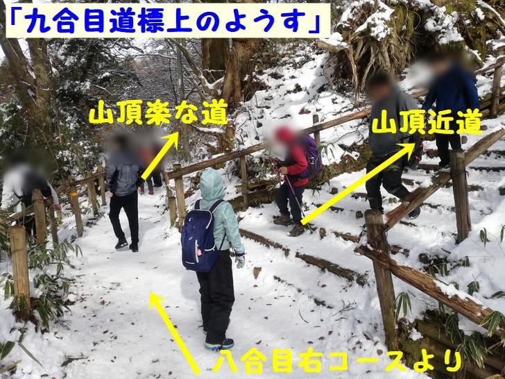 冬の金剛山千早本道八合目の分岐
