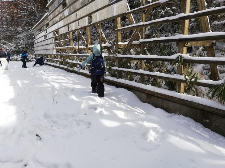 積雪の金剛山山頂