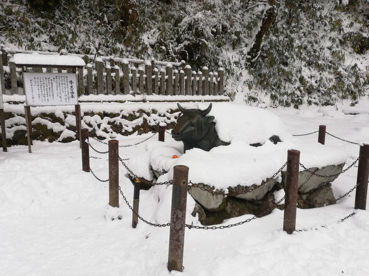 冬の金剛山・雪に埋もれた牛王像