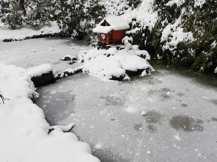 冬の金剛山・転法輪寺ひさご池が凍る