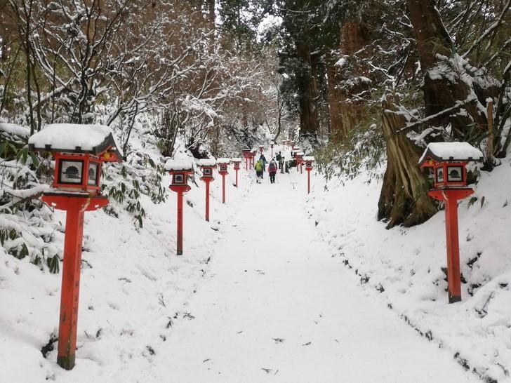 冬の金剛山・葛木神社へ向かう参道