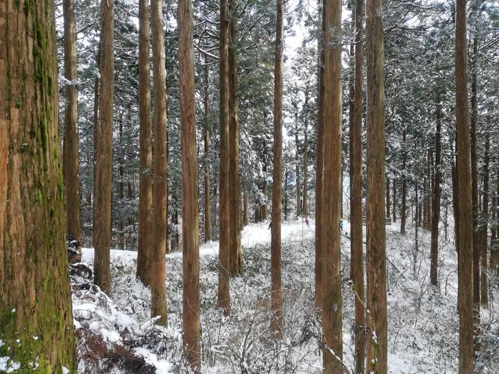 【金剛山へ雪山登山】神秘的な世界へ