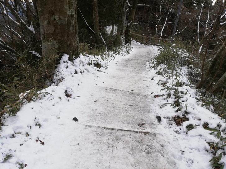 冬の金剛山・千早本道を下山する