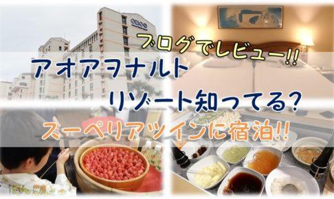 【ブログ】アオアヲナルトリゾート知ってる?スーペリアツインに宿泊!!