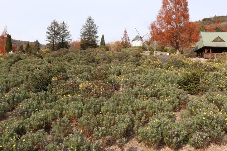 あすたむらんど徳島の風車の丘ゾーン