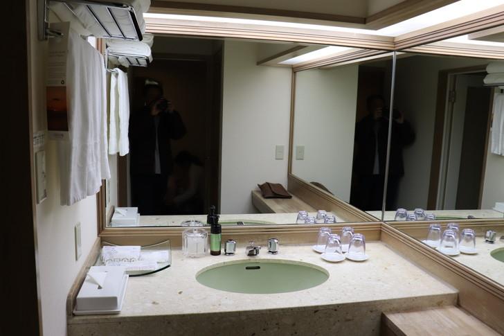 アオアヲナルトリゾートのスーペリアツインの洗面所