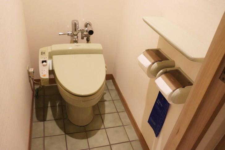 アオアヲナルトリゾートのスーペリアツインのトイレ