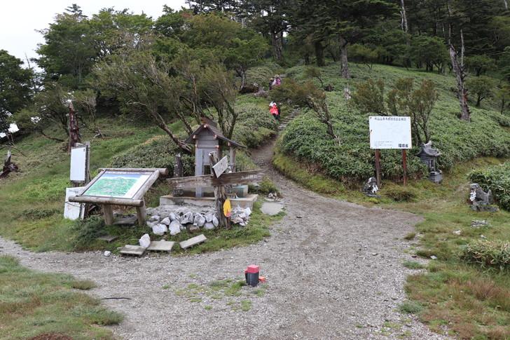 四国剣山の尾根道コース「刀掛けの松」