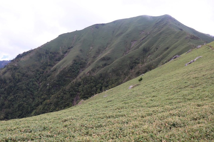剣山~次郎笈縦走コースの景色