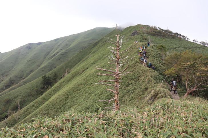 剣山~次郎笈縦走コースのジロウギュウ峠