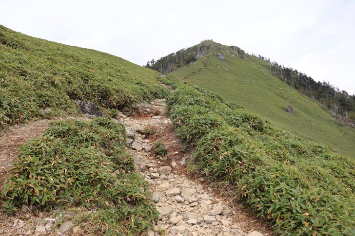 剣山から次郎笈への縦走コースのようす