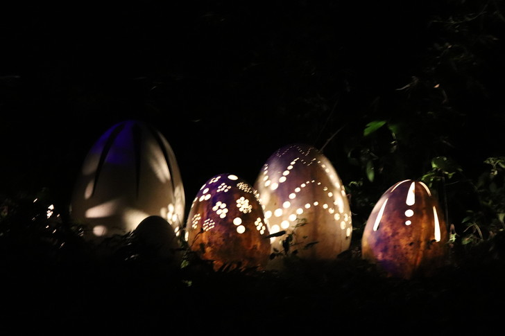 ナイトウォーク火の鳥の遊歩道・卵の色が変化する