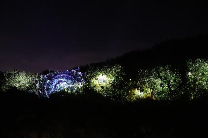 ナイトウォーク火の鳥・花火のプロジェクションマッピング