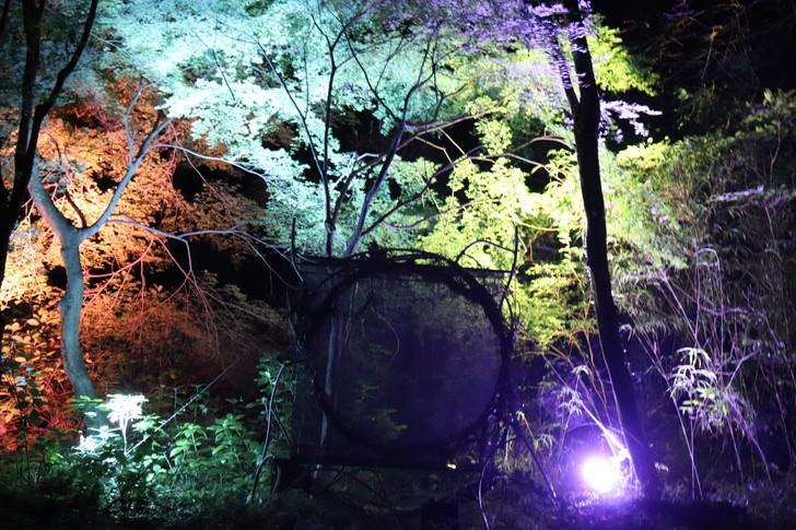 時空の穴で不思議な映像体験
