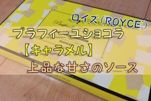 ロイズ「プラフィーユショコラ」【キャラメル】上品な甘さのソース