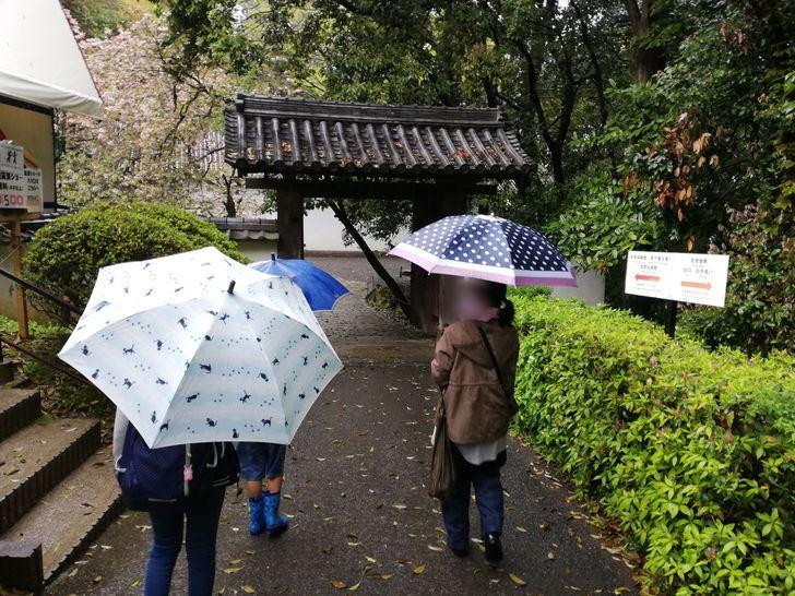 伊賀流忍者博物館は雨の日でも観光できるの?